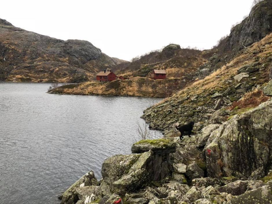 Stien til Storavassbu.