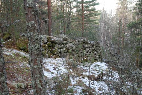 Merking og skilting av stiene i Kampestadlia - Sulusåsen
