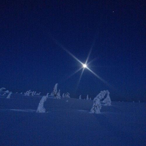 Måneskinnstur på Hedmarksvidda.