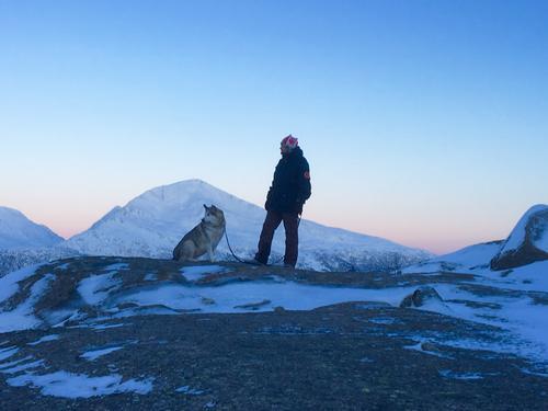 Trollfjellet  Tjeldøya. Mørketiden er over
