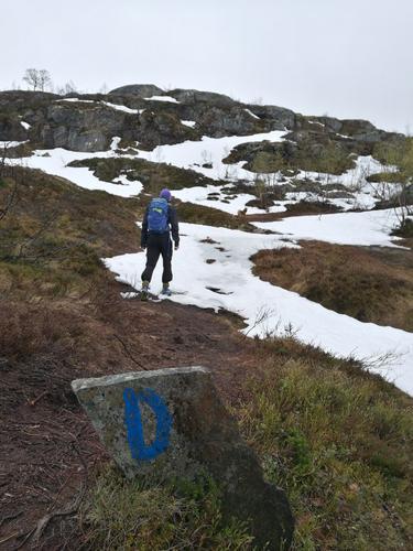 Dronningstien 28. mai. Dronningstien i Hardanger er fullt mulig å gå nå. Snø i deler av traséen, men hard og grei å gå på.