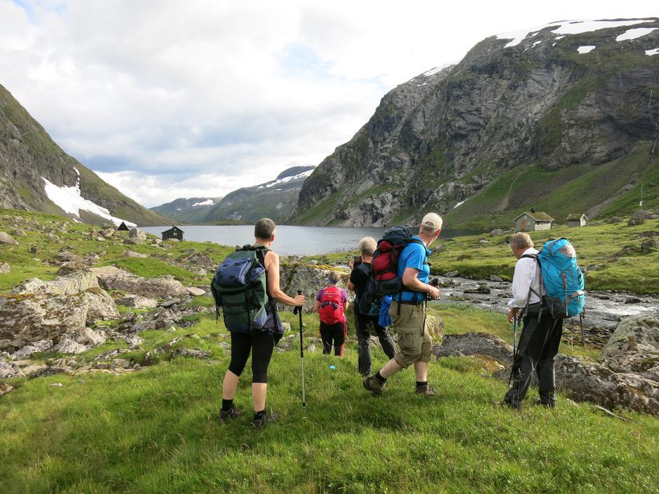 I Årdalskupa, der vi kjem opp når vi går frå Legestøylen på Jølster