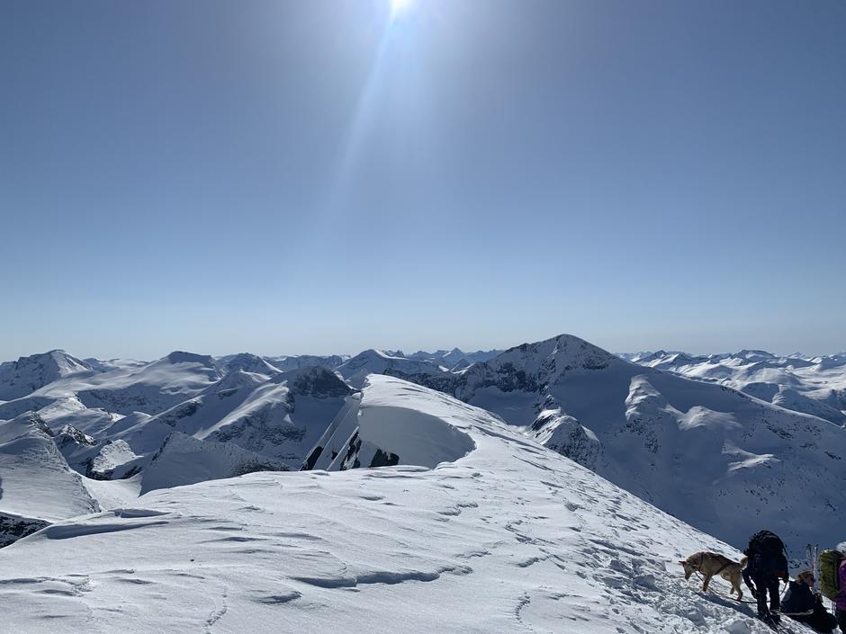 Mange fjell i panorama, mellom anna Fløtatind og Skjorta