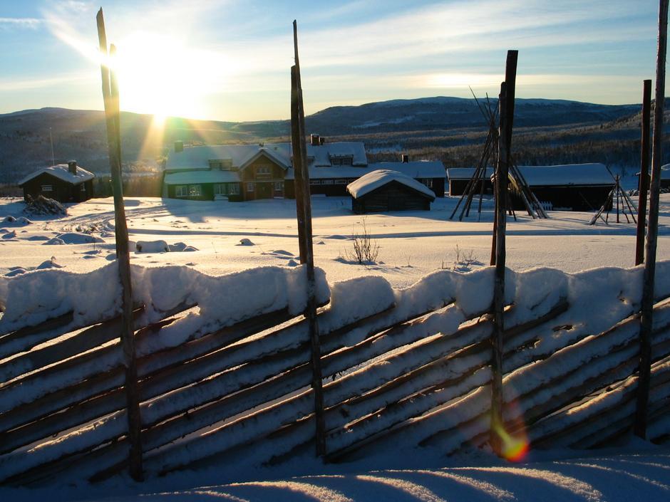 Liomseter, foto: Geir Bråten