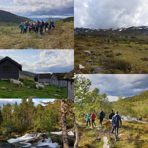 Søreide- og Mardalsstøylen i Jardalen