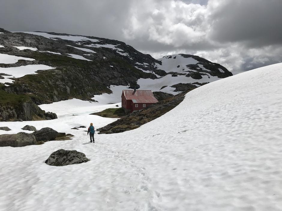 Onsdag 1.7: Høgabu (900 moh) i Bergsdalen