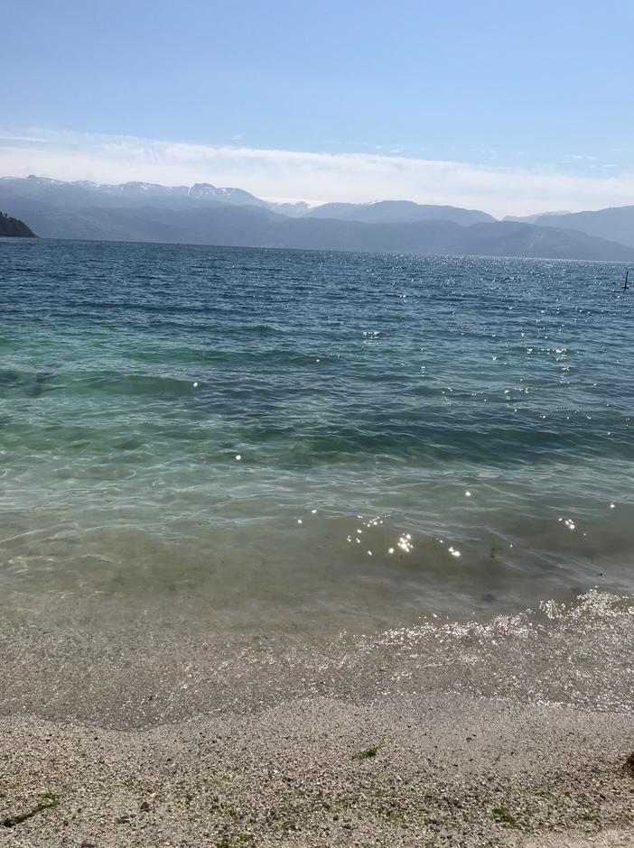 Tirsdag 29.6: Heilt villt - badings i Hardangerfjorden. Det kalles fra Fjord til fjell eller omvendt.