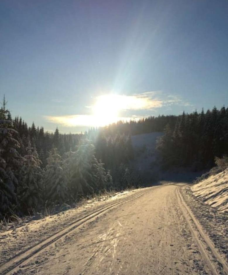 Løypene 04. januar, like ved Heggsjø.