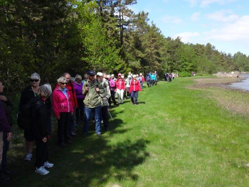 Seniortur 25. mai på brøtsø