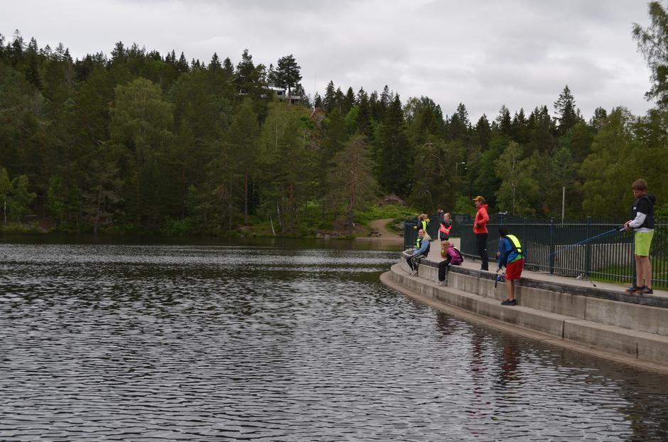 Fiske på Sommerskole på Landfalltjern.