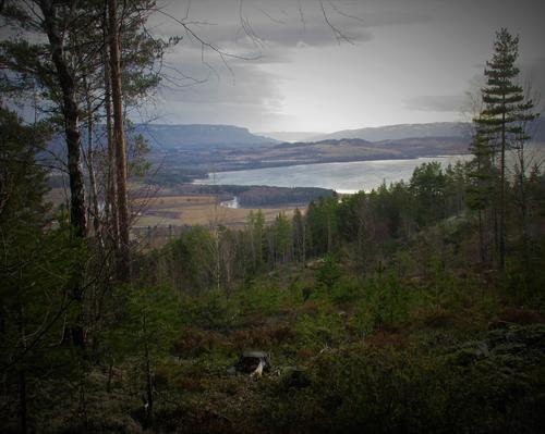 Fra Raudkasthøgda med utsikt over Tyrifjorden.