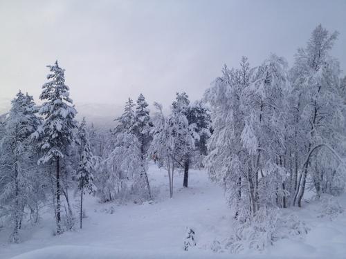Vinteren fester grepet og ski er nå mulig mange steder i setesdal