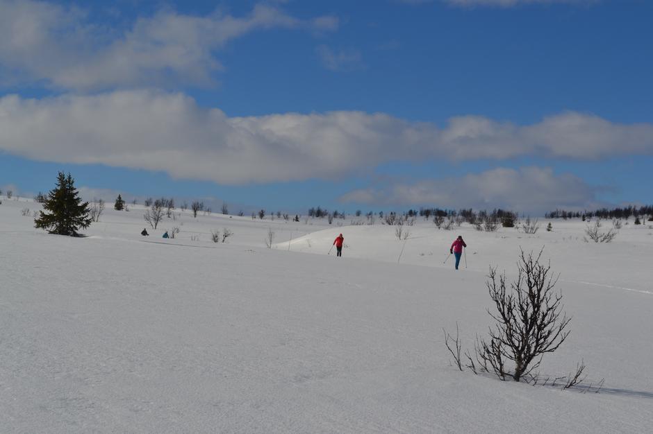 Ny løype i Gausdal Vestfjell - Langsua