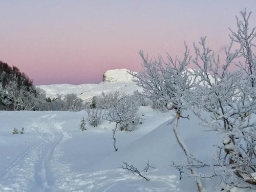 Bodømarka i vinterlys. Steigtind i bakgrunnen. På tur mot Båstolia.