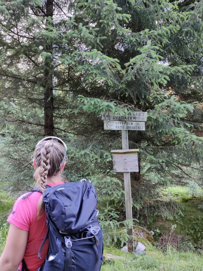 Noen plasser er det skilt man kan følge - men husk å følge med på kartet selv også!