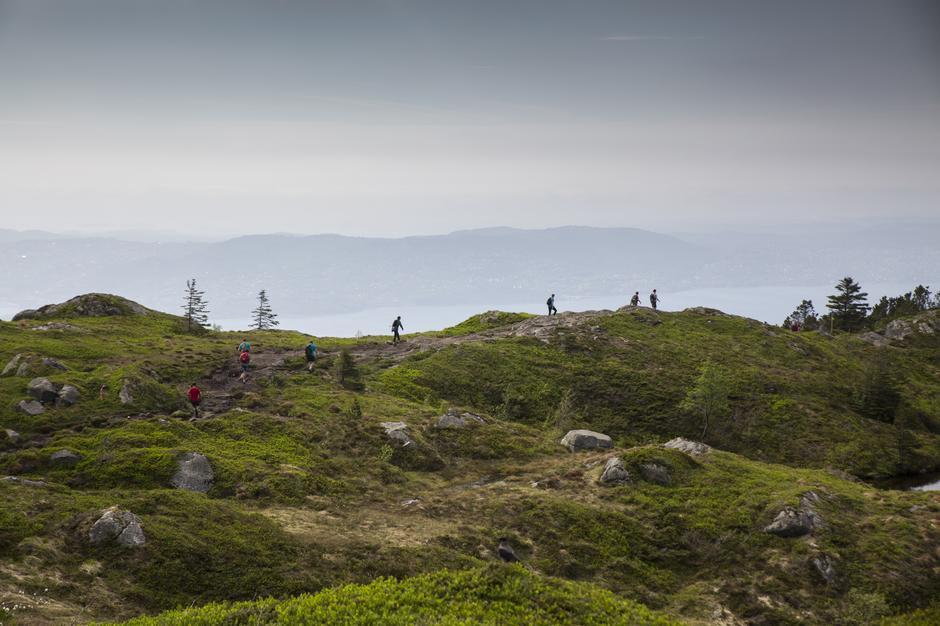 7-fjellsturen, Sandviksfjellet.