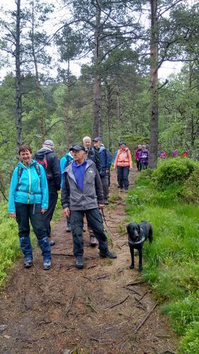 Onsdag 31.5 tur til Nordnesdalen