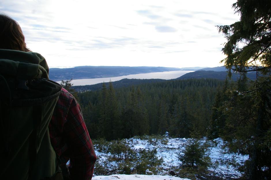 Utsikt sørover fra stien opp mot Skreikampen.