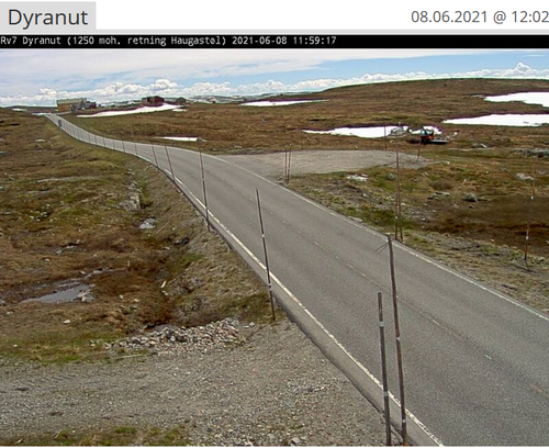 Uke 24: Føremelding for Hardangervidda