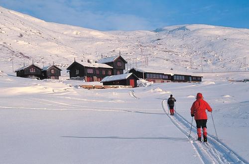 Haukeliseter har et unikt skiterreng med stabile snøforhold. Det går en rekke kvistede løyper ut fra hytta. Foto Kjell Helle-Olsen
