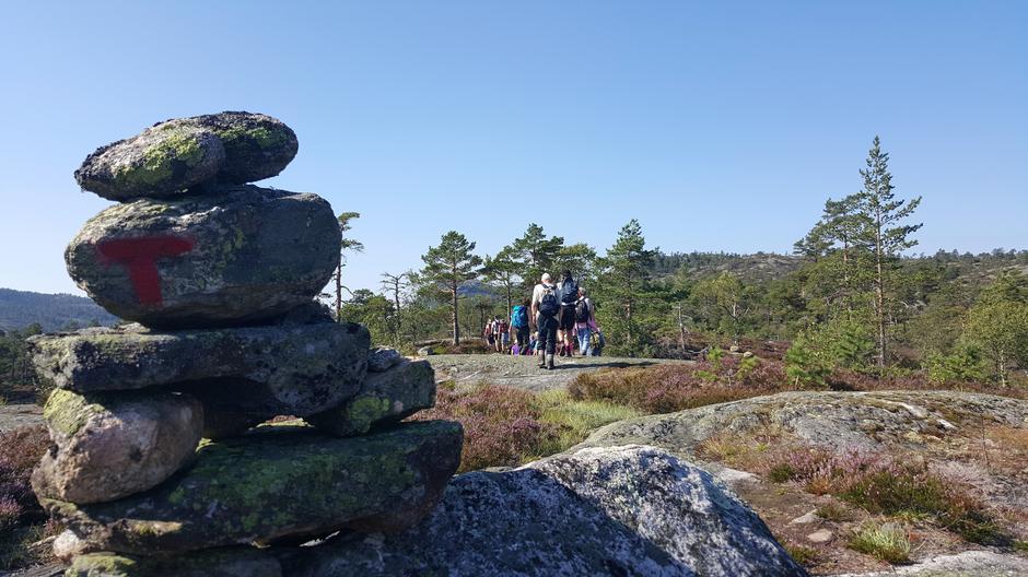 Ein del av turen gjekk langs T-løypa.