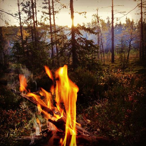 Ekstrem skogbrannfare i vårt område