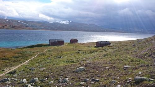 Saltfjellet i høstfarger neste uke?