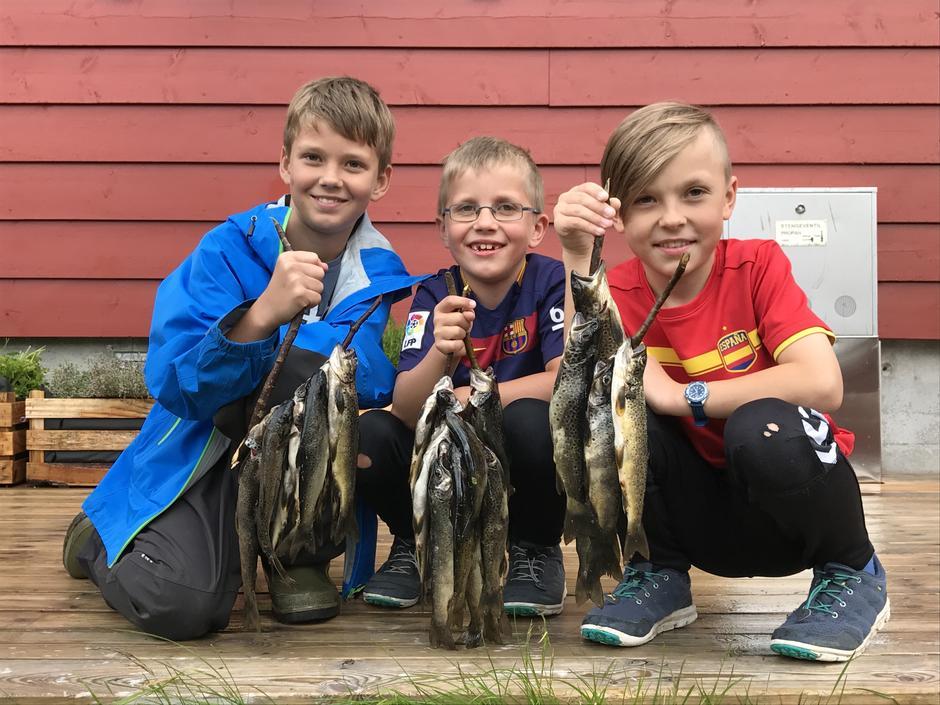 SKITT FISKE: Det koker i de mange vatnene mellom Stranddalen og Sandsa, ikkje minst i Stranddalsvatnet.
