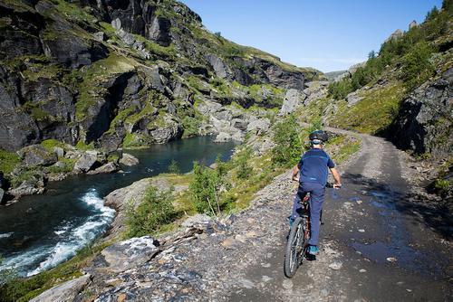 Rallarvegen, strekningen fra Finse til Flåm. Foto: André Marton Pedersen