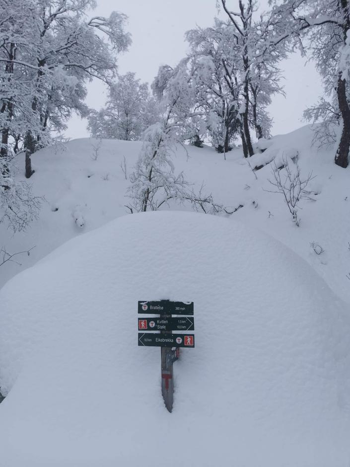 Mye snø på vei til Kvitlen. Hele 60 cm vil by på store utforminger da en synker ned selv på fjellski.