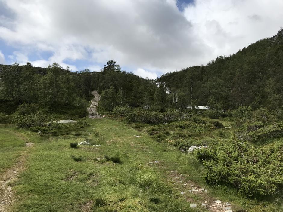 Start på Militærvegen. Jevn stigning frem til Grågavltjørnane (795 moh).
