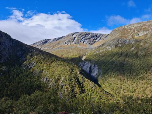 Seniortur til Kongsvold Fjellstue på Dovrefjell