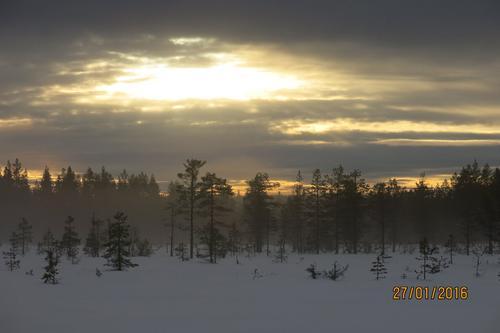 Tur til Vollkoia/Blåmyrkoia 27.01.16.