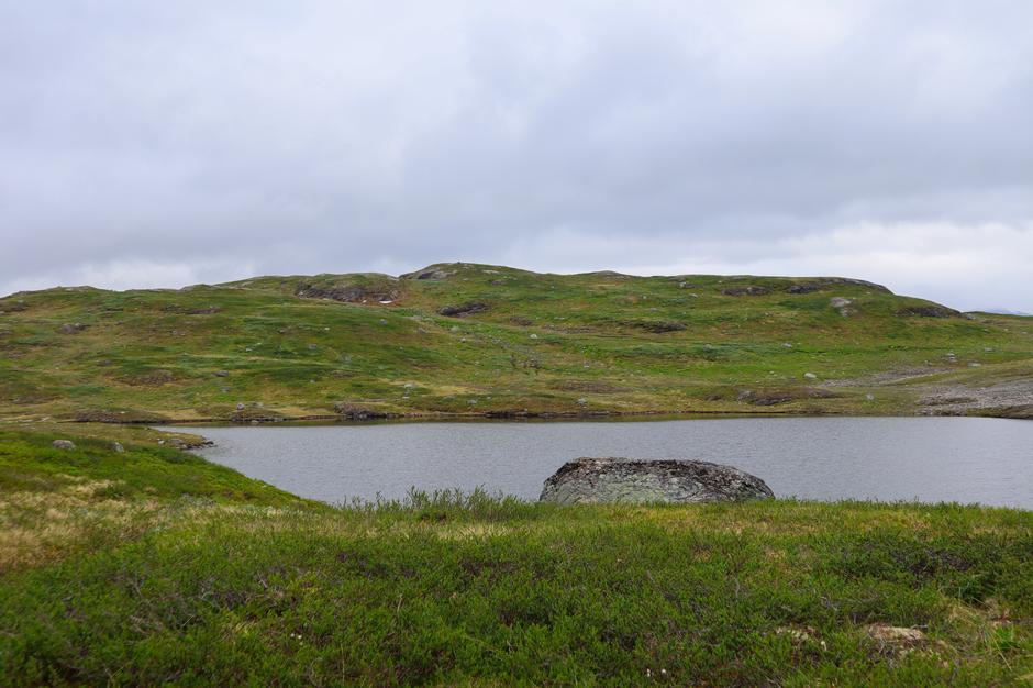 Mektige Hardangervidda