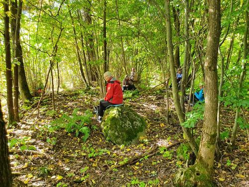 Pause i skogen