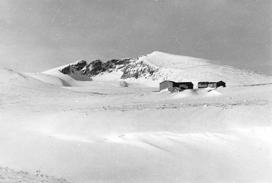 1950 snøhetta