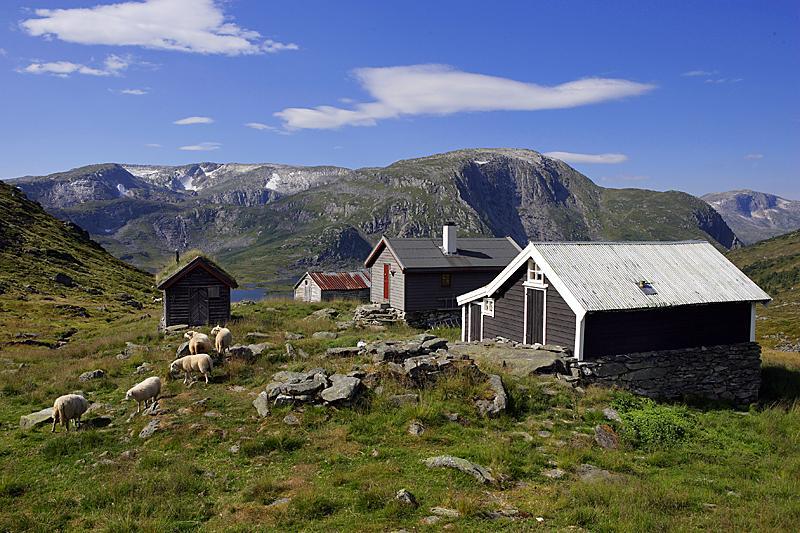 Vatnane Foto: Svein Ulvund