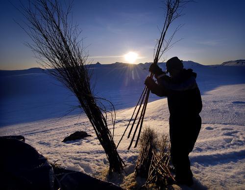 Kvisting av vinterløyper