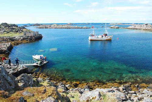Få ledige plasser på turene til Gaukværøya i juli