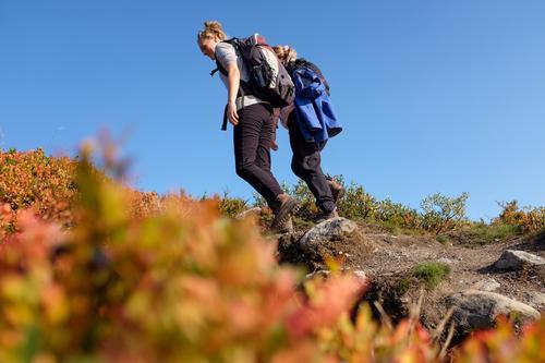 Drømmer du om å jobbe på turistforeningens største fjellstue? Nå har du sjangsen!