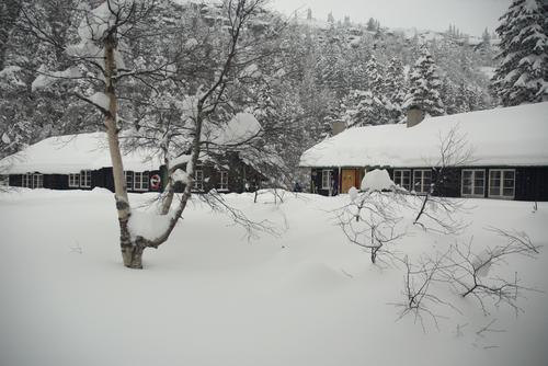 Bli med Barnas Turlag/ DNT ung på overnattingstur til Ivarsbu, Skrim 20.-21. februar
