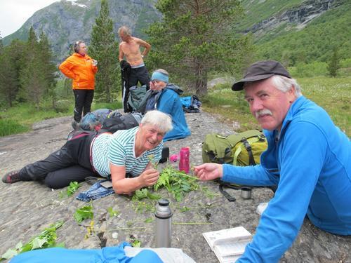 Floratur i Reindalen
