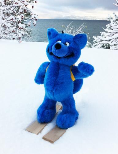 Turbo på ski i Malvik