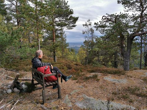 Fra utsikt til utsikt på Mjøndalsskauen