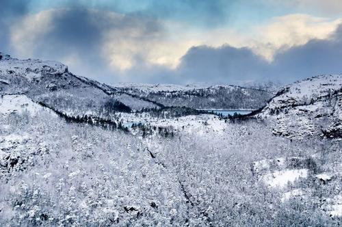 UKE 50: Endelig er snøen her