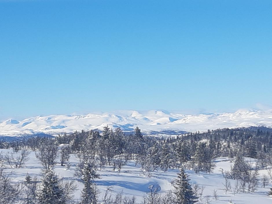 Utsikt mot Jotunheimen