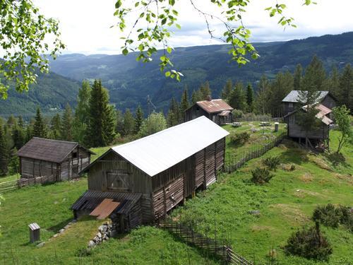 Bagnsbergatn