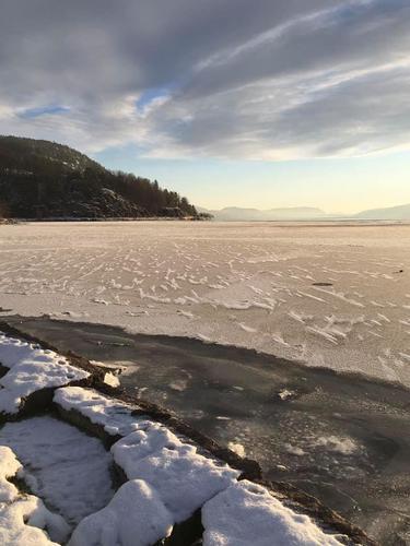 Fottur langs Drammensfjorden vinterstid