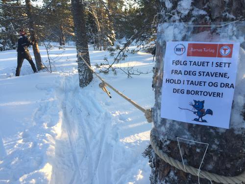 Uke 3: Skiløyper i Hamarregionen