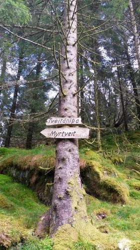 Stien til Tveitanipa